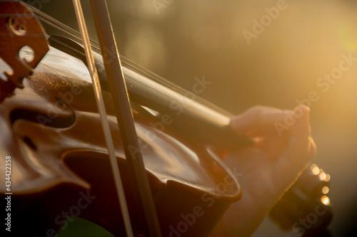violon Fototapeta