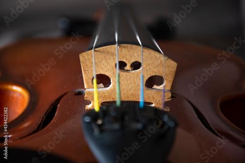 Fotografia violon