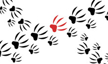 Paw Prints Of A Beast Of Prey With Sharp Claws Among Which Stands Out Red On A White Background Wallpaper For Design