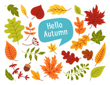 Autumn Leaves And Berries, Hand Drawn Colorful Trendy Cartoon Set. Flat Rustic Leaf Collection And Speech Bubble. Fall Leave, Sticker Icons Collection. Autumn Clip Art Vector On White Background
