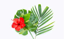 Red Hibiscus Flower With Tropical Leaves On White. Summer Background Concept