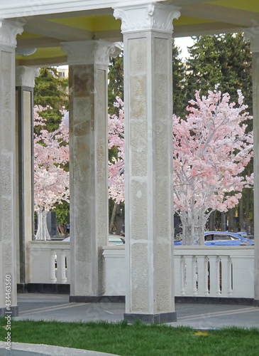 Fotomural Outside galleries, balconies and colonnades against the sky and flowering trees,