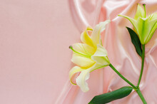Elegant Wavy And Smooth Pink Satin Cloth Texture Background With Lily Flowers. Abstract, Texture And Wedding Concept.