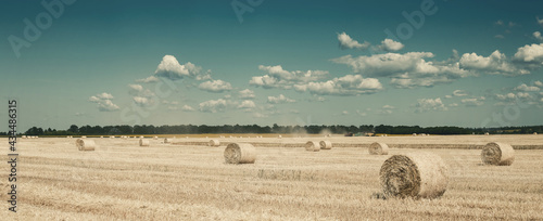 Fotografie, Tablou Panorama with haystacks on wheat field