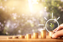 Stack Of Coins With Youg Growing Plant. Financial Success And Managament Concept