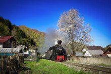 Steam Engine In Spring Time Into The Romanian`s Hills