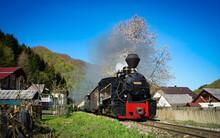 Steam Train Engine Near A Spring Tree In North Romania