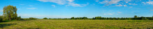 Panorama Of A Large Mown Meadow In Front Of Forest