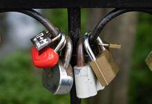 Wedding Locks In The Park Close Up