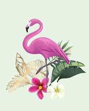 Flamingo With Flowers, Isolated Vector Illustration