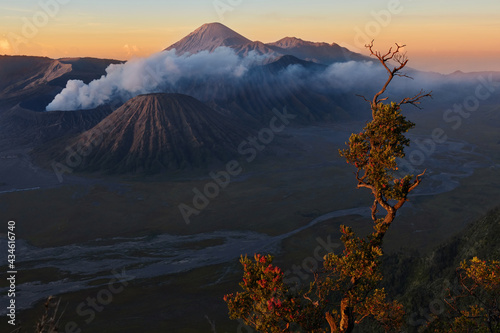 Canvas Print Mount Gunung Bromo volcano in East Java, Indonesia