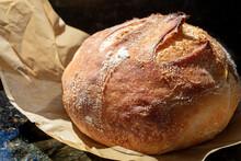 Crispy Just Baked Sourdough Bread Loaf Resting After Just Being Baked In Oven
