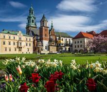 Spring In Krakow - Wawel Castle In Flowers.