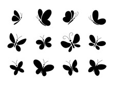 Set Of Different Black Butterfly Silhouettes For Design.