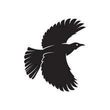 Bird Silhouette. Bird Illustration Symbol.