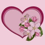 Card with a blank space for text, pink heart with apple blossoms