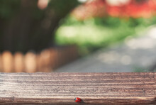 A Wooden Table And A Ladybug On A Blurry Summer Background