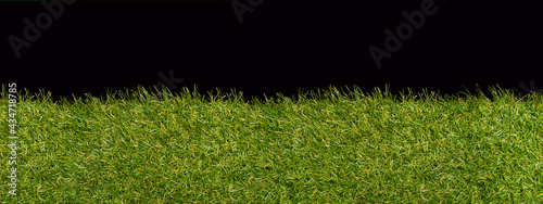 Fotografia, Obraz Green grass borders for decoration and covering on black background
