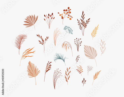 Canvastavla Plants, dry palm leaf, flowers and branches collection