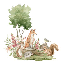Watercolor Forest Landscape. Trees, Field, Stump, Fir-trees, Wild Animals. Red Fox, Bird, Weasel, Squirrel, Meadow Flowers. Summer Woodland, Nature Scene, Valley