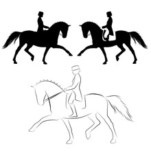 Dressage Horse Extended Trot