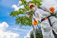 Professional Gardener Spraying Weeds