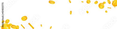 American dollar coins falling Fototapet