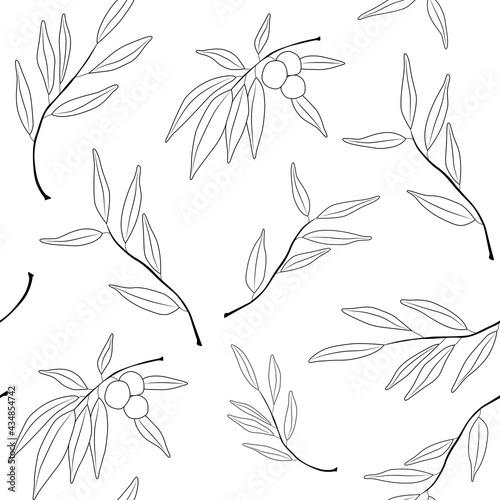 Tapety Skandynawskie  wzor-z-galazek-oliwnych-i-oliwki-prosty-minimalistyczny-wzor-tapety-z-elementem-natury-wzor-z-elementem-botanicznym