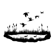 Silhouettes Of Water Plants, Ducks And Reeds. Vector Black Illustration Of The Pond With Flying And Floating Birds.