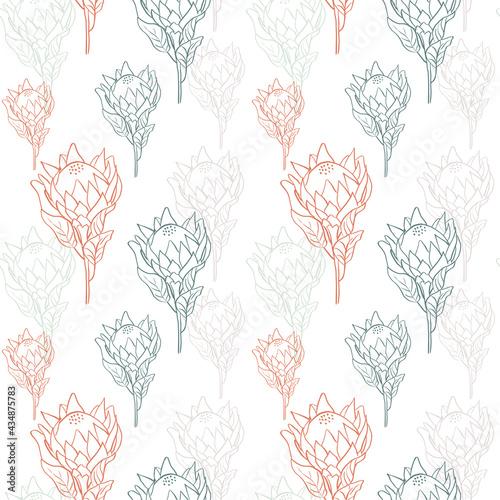 Tapety Eklektyczne  kwiatki-z-tropikalnych-proteas-krola-w-kwiat-na-bialym-tle-recznie-rysowane-ilustracji-wektorowych-styl-linii-vintage-wzor-w-kolorach-czerwonym-zielonym-niebieskim-i-bezowym