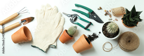 Canvas Concept of gardening on white background, top view