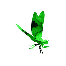 Watercolor Illustration Of A Green Abstract Dragonfly With Paint Stripes. Cute Funny Insect Print. A Winged Insect With Large Eyes. Isolated Over White Background. Drawn By Hand.