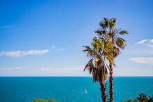 Mer Et Palmiers Sète