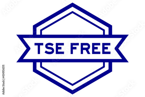 Valokuvatapetti Vintage hexagon label banner with word TSE (Transmissible Spongiform Encephalopa