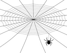 Spider Weaves A Web, Black Silhouette On A White Background