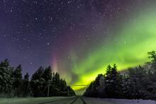 Aurora Borealis In The Forest Murmansk