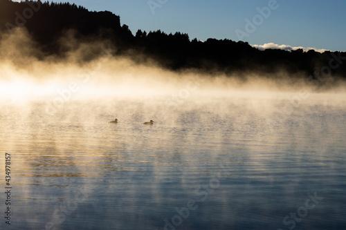 Rise and Shine Fototapet