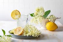 Glass Of Homemade Elderflower Lemonade With Lemon, Lime Juice And Freshly Picked Elderberry Flowers. Healthy Refreshing  Mocktail With Elderflower Cordial Syrup