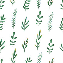 Seamless Floral Pattern With Hand Drawn Watercolor Wild Flowers And Leaves