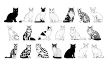 Set Of Realistic Cats Silhouettes Vector Illustration