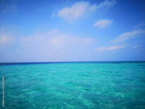 Fototapeta 宮古島(八重干瀬)のダイビングスポット