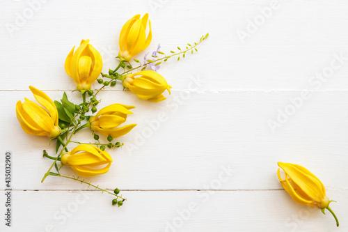 Fotografie, Obraz yellow flowers ylang ylang local flora of asia arrangement flat lay postcard sty