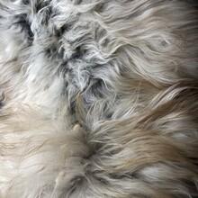 Close Up Of Natural Sheepskin Rug Texture