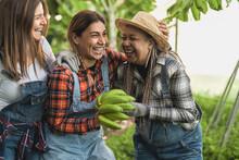 Happy Farmers Having Fun Working In Bananas Plantation - Farm People Lifestyle Concept
