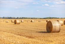 Strohballen Im Sommer Liegen Auf Dem Gemähten Acker