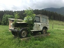 Old Abandoned Truck Full Of Green Life