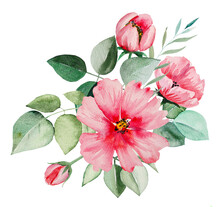 Watercolor Pink Flowers And Green Leaves Bouquet Illustration