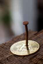 Bitcoin Nailed To Wood By Rusty Nail