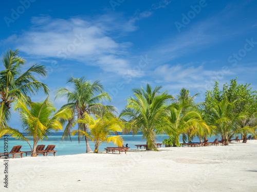 Fotografiet Maldives tropical islands panoramic scene, idyllic beach palm tree vegetation an