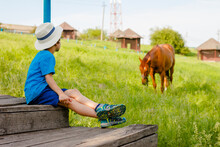 Boy Sits On The Steps And Watches A Horse In The Countryside